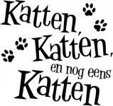 Katten, katten en nog eens katten