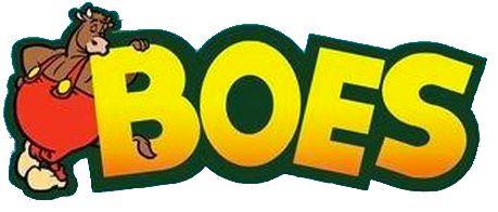 Boes (Saga)